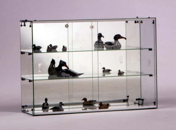 vitrines en verre. Black Bedroom Furniture Sets. Home Design Ideas